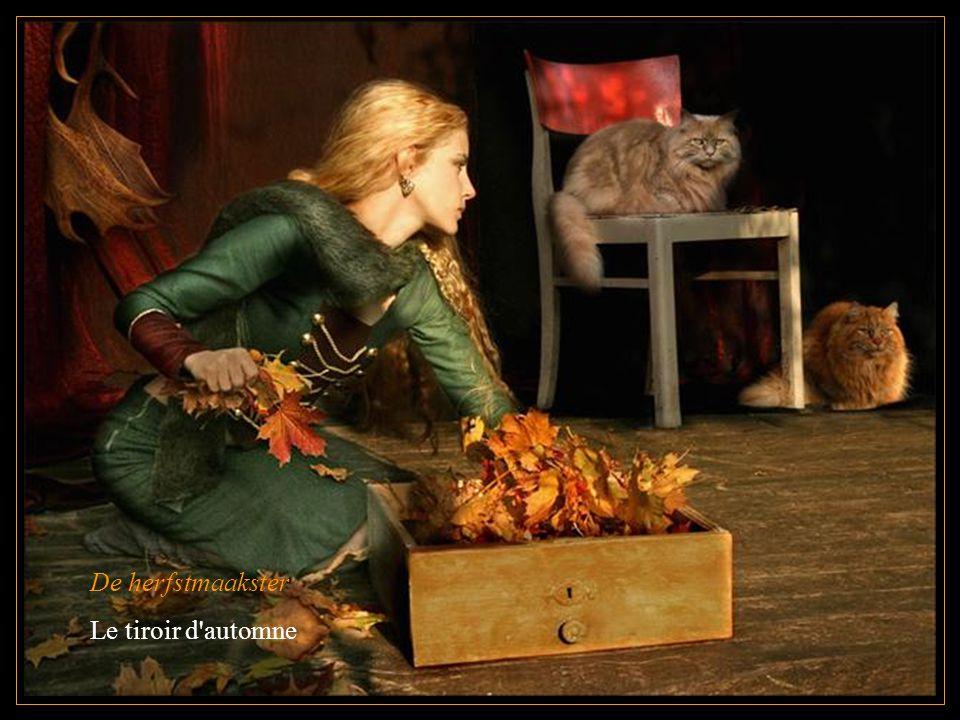 De herfstmaakster Le tiroir d automne