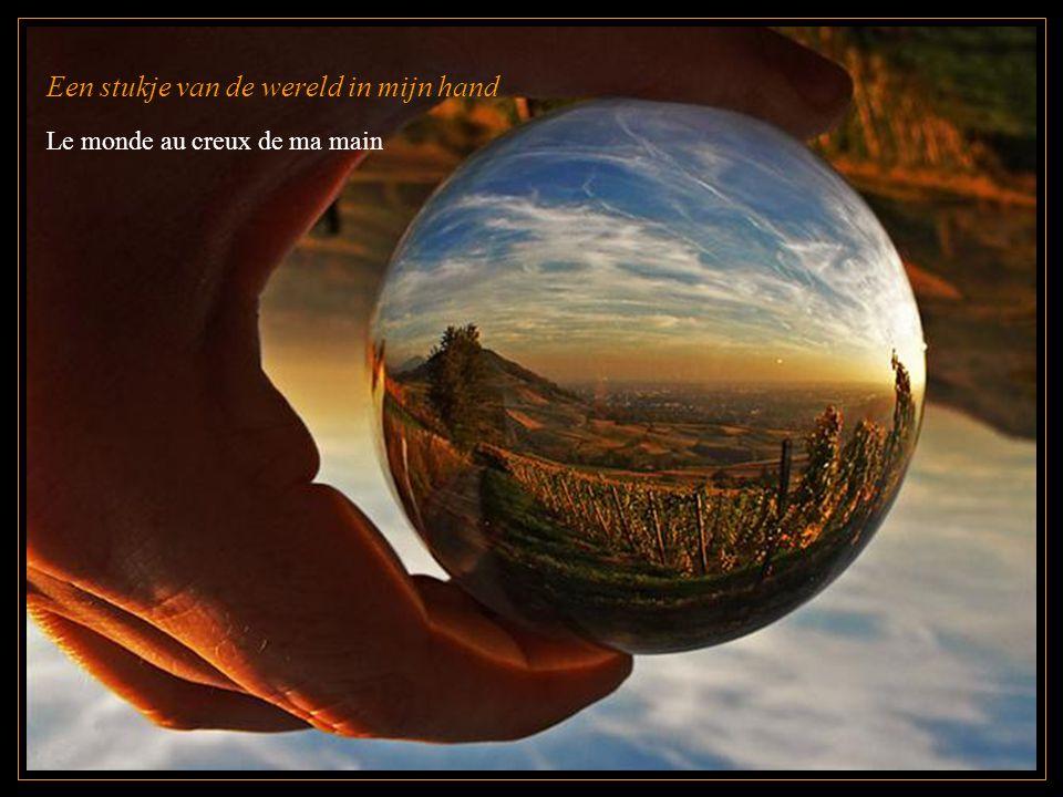 Een stukje van de wereld in mijn hand Le monde au creux de ma main