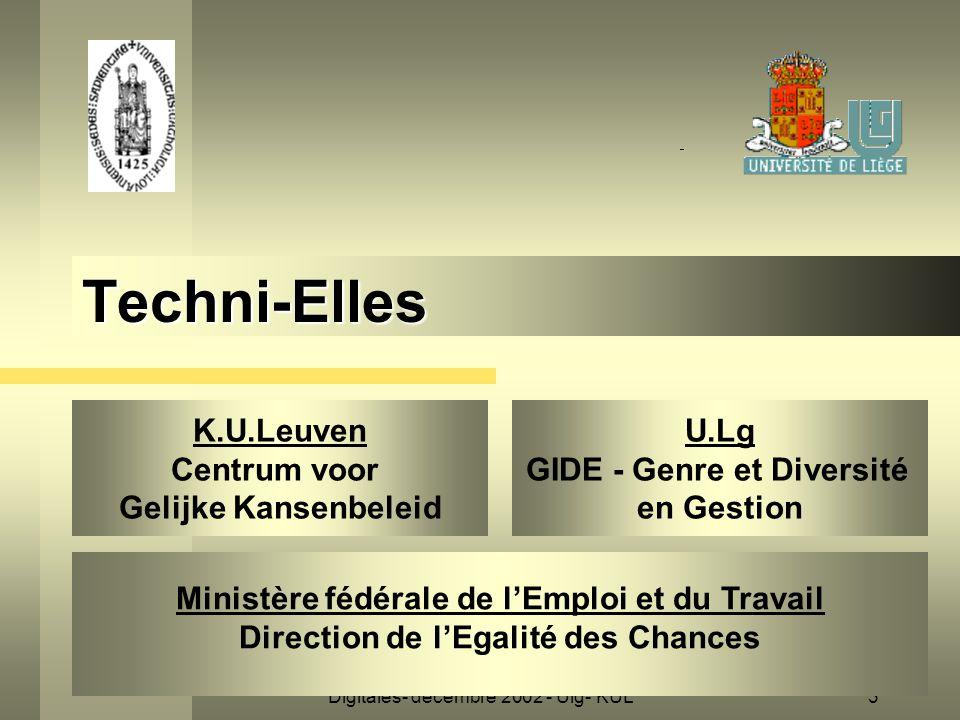 Digitales- décembre 2002 - Ulg- KUL3 Techni-Elles K.U.Leuven Centrum voor Gelijke Kansenbeleid Ministère fédérale de l'Emploi et du Travail Direction de l'Egalité des Chances U.Lg GIDE - Genre et Diversité en Gestion
