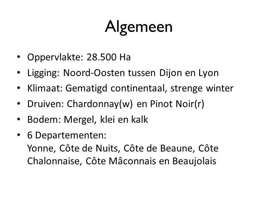 Algemeen Oppervlakte: 28.500 Ha Ligging: Noord-Oosten tussen Dijon en Lyon Klimaat: Gematigd continentaal, strenge winter Druiven: Chardonnay(w) en Pi