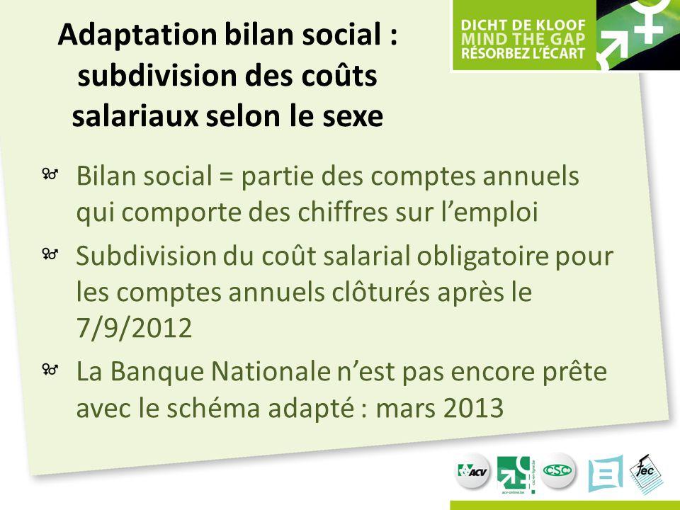 Adaptation bilan social : subdivision des coûts salariaux selon le sexe Bilan social = partie des comptes annuels qui comporte des chiffres sur l'empl