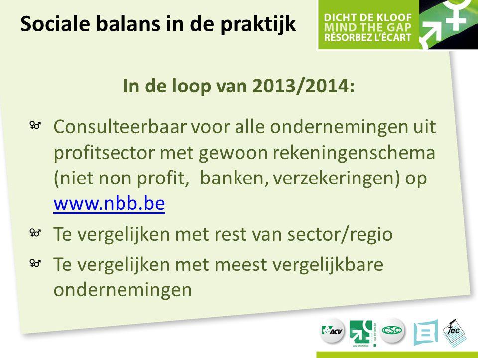 In de loop van 2013/2014: Consulteerbaar voor alle ondernemingen uit profitsector met gewoon rekeningenschema (niet non profit, banken, verzekeringen)