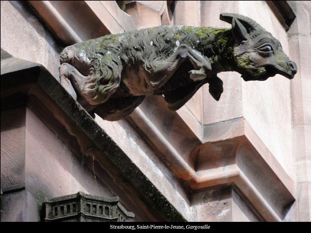 Strasbourg, Saint-Pierre-le-Jeune, Gargouille