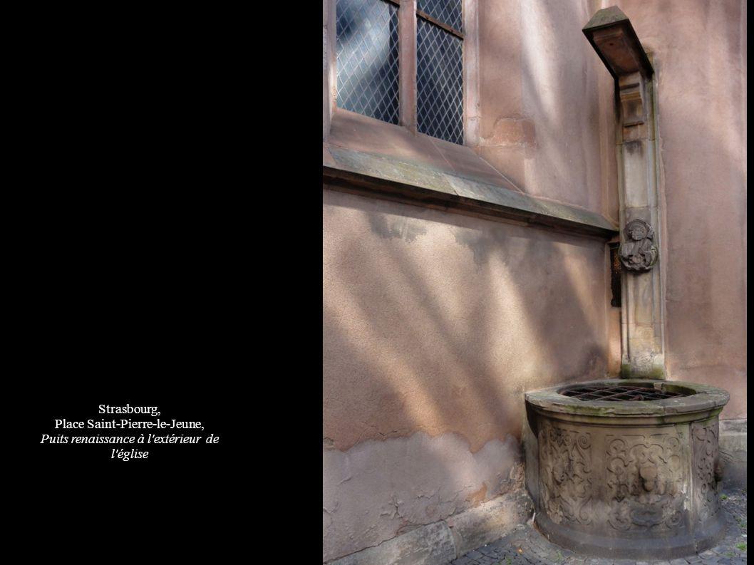 Strasbourg, Place Saint-Pierre-le-Jeune, Puits renaissance à l'extérieur de l'église