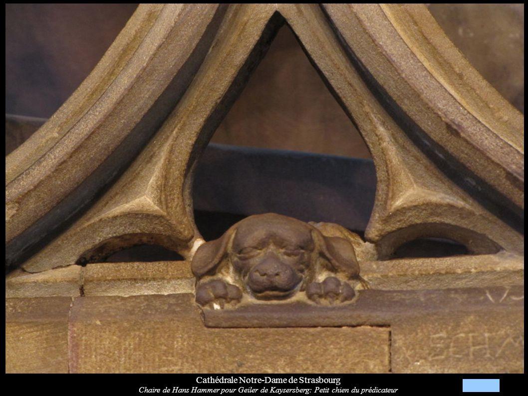Cathédrale Notre-Dame de Strasbourg Chaire de Hans Hammer pour Geiler de Kaysersberg: Petit chien du prédicateur