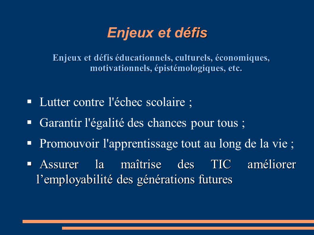 éfis Enjeux et défis Enjeux et défis éducationnels, culturels, économiques, motivationnels, épistémologiques, etc.