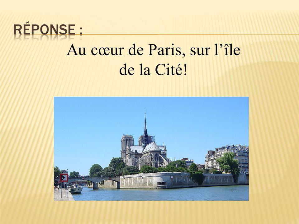 Au cœur de Paris, sur l'île de la Cité!