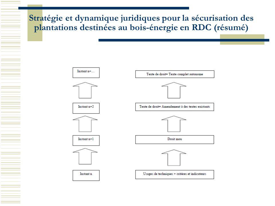 Stratégie et dynamique juridiques pour la sécurisation des plantations destinées au bois-énergie en RDC (résumé)