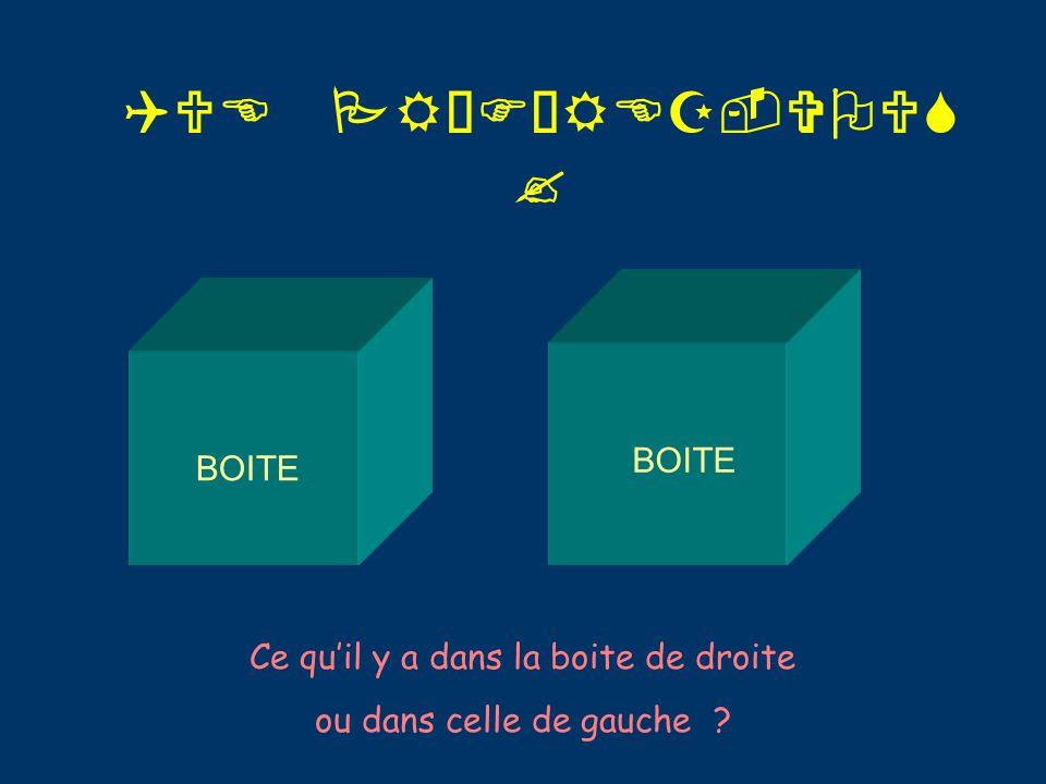 QUE PRÉFÉREZ-VOUS ? BOITE Ce qu'il y a dans la boite de droite ou dans celle de gauche ?