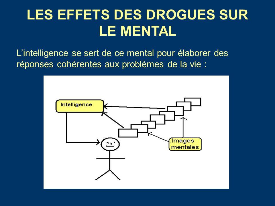 LES EFFETS DES DROGUES SUR LE MENTAL L'intelligence se sert de ce mental pour élaborer des réponses cohérentes aux problèmes de la vie :
