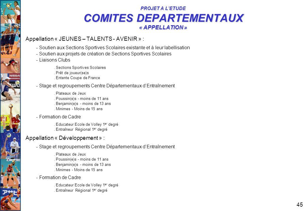 45 PROJET A L'ETUDE COMITES DEPARTEMENTAUX « APPELLATION » Appellation « JEUNES – TALENTS - AVENIR » : - Soutien aux Sections Sportives Scolaires exis
