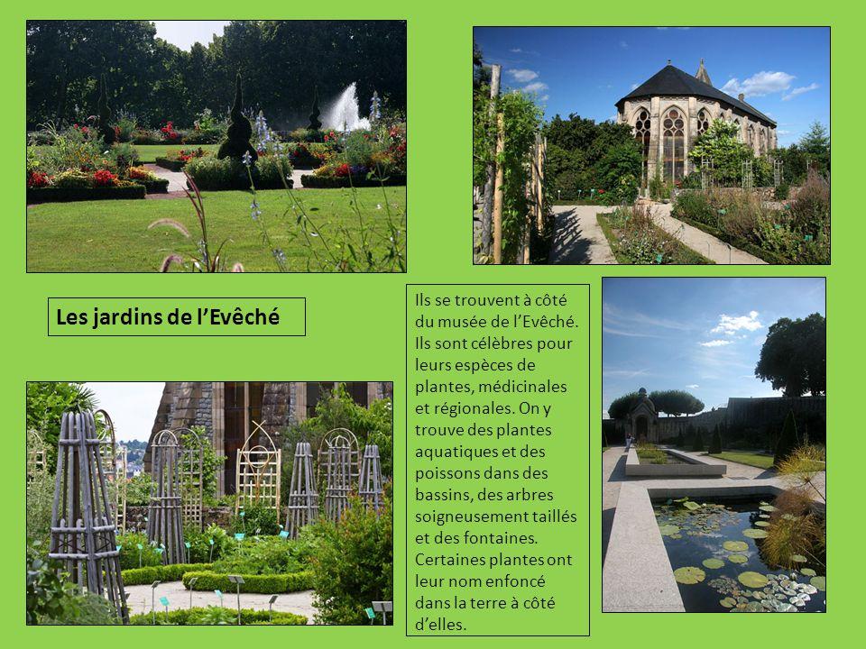 Ils se trouvent à côté du musée de l'Evêché. Ils sont célèbres pour leurs espèces de plantes, médicinales et régionales. On y trouve des plantes aquat