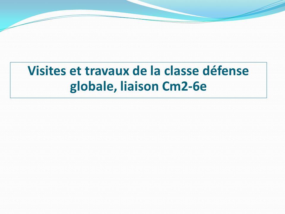 Visites et travaux de la classe défense globale, liaison Cm2-6e