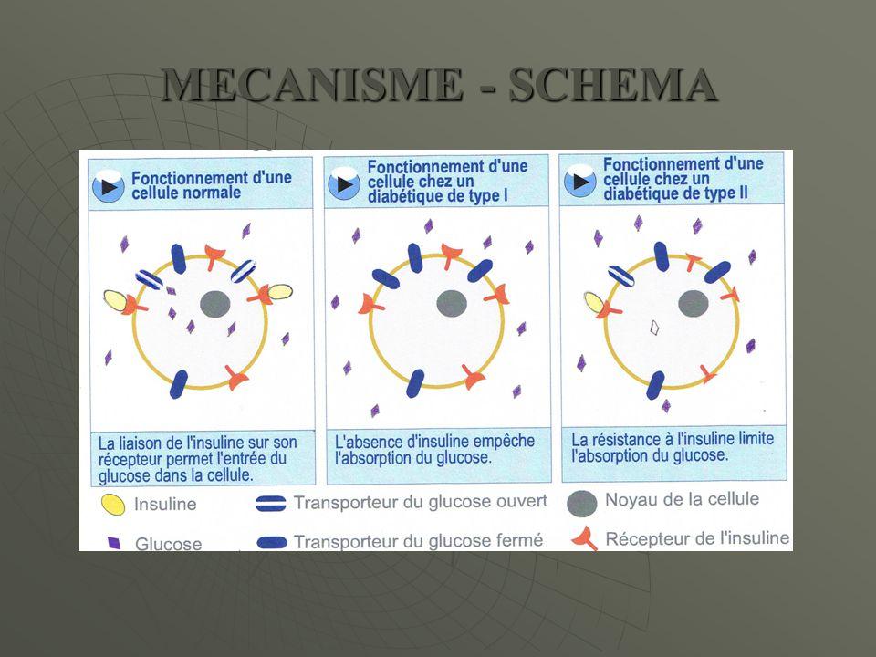 MECANISME - SCHEMA