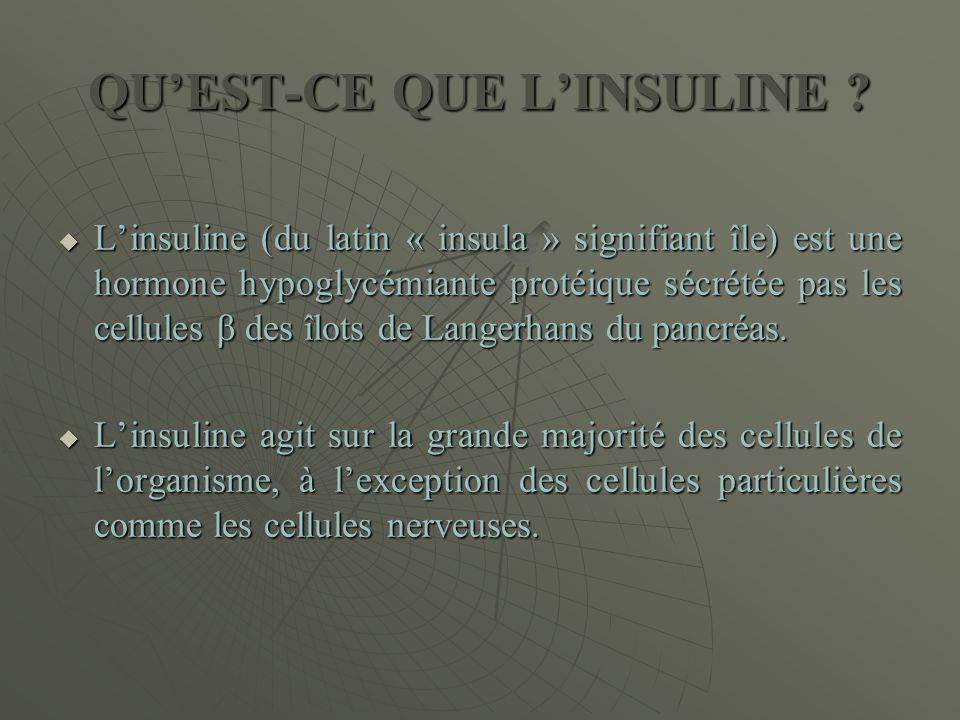 QU'EST-CE QUE L'INSULINE ?  L'insuline (du latin « insula » signifiant île) est une hormone hypoglycémiante protéique sécrétée pas les cellules β des