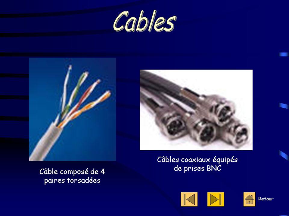 Câble composé de 4 paires torsadées Câbles coaxiaux équipés de prises BNC