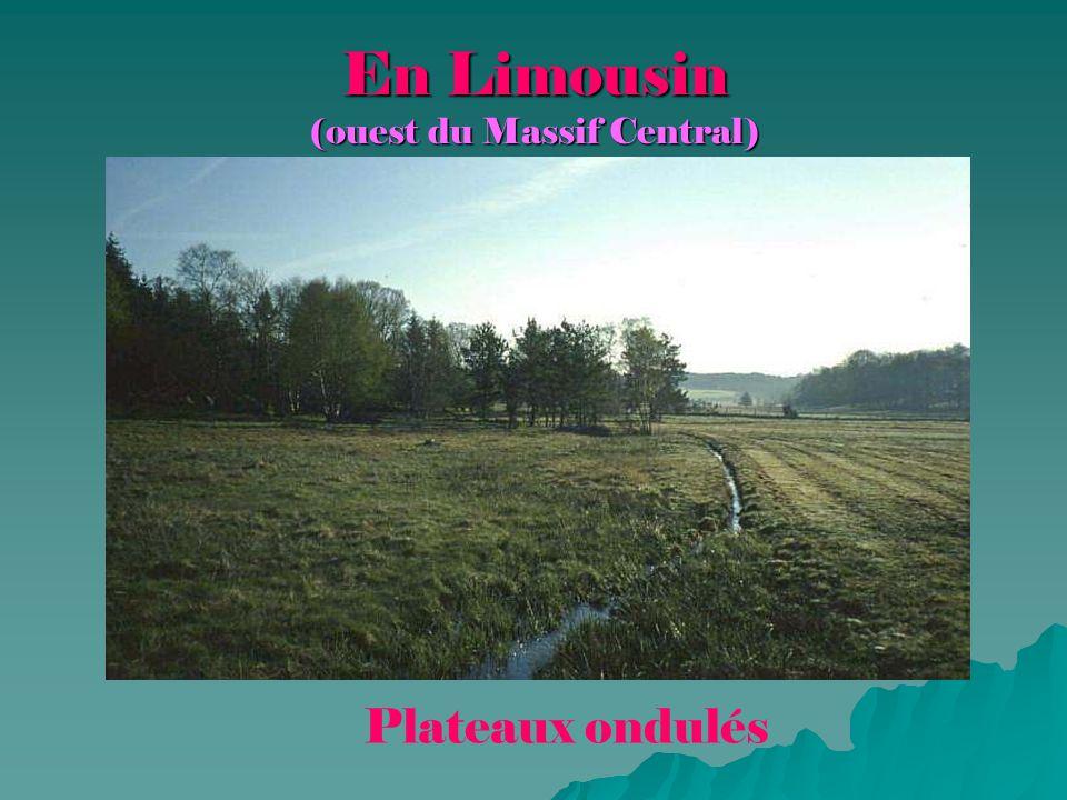 En Limousin (ouest du Massif Central) Plateaux ondulés