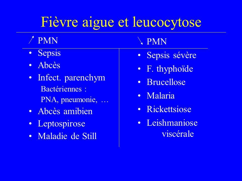 Fièvre aigue et leucocytose PMN Sepsis Abcès Infect. parenchym Bactériennes : PNA, pneumonie, … Abcès amibien Leptospirose Maladie de Still PMN Sepsis