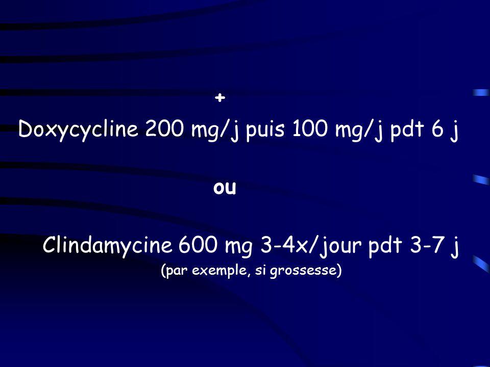 Traitement de la malaria à P. falciparum sévère Bihydrochlorate de quinine –500 mg IV (dans 250ml glucosé ED) en 4h/ 3x/j pdt 3-7j –10 mg/kg (soit 8mg