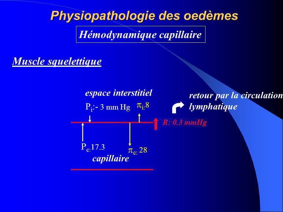 Physiopathologie des oedèmes Hémodynamique capillaire P c: 17.3 P i :- 3 mm Hg  i: 8  c: 28 Muscle squelettique espace interstitiel capillaire R: 0.