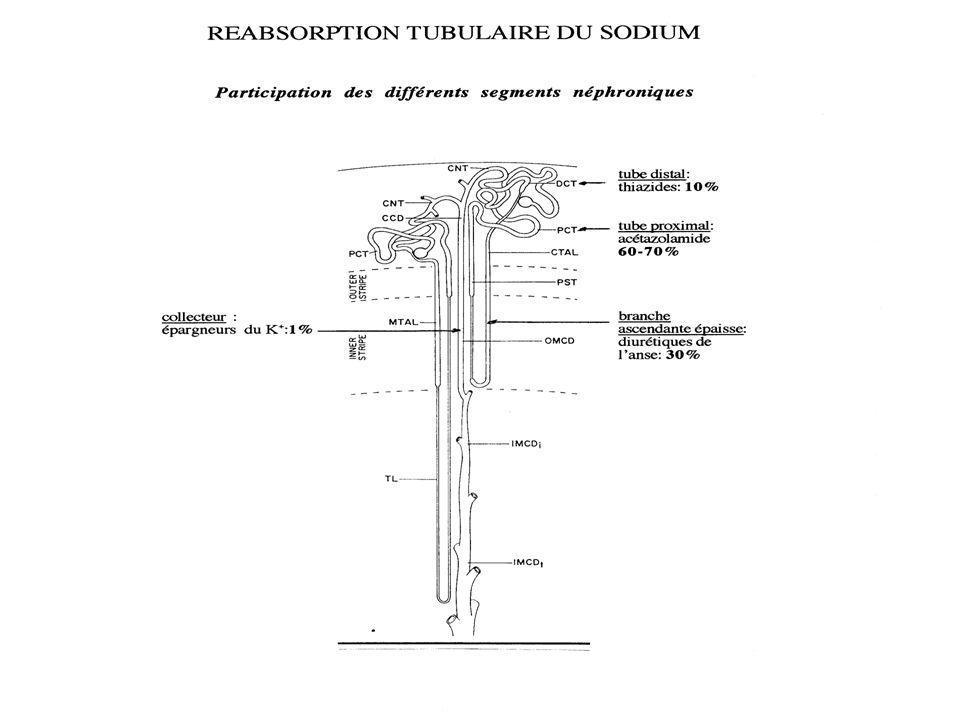 Physiopathologie des oedèmes Anomalie primitive de l'hémodynamique capillaire: Séquence des événements: 1.altération de l'hémodynamique capillaire résultant dans un mouve- ment de fluide de l'espace vasculaire vers le secteur interstitiel 2.en réponse à la réduction du volume plasmatique, le rein retient de manière appropriée du sodium et de l'eau 3.une partie du fluide retenu reste dans l'espace vasculaire, tendant à restaurer le volume plasmatique 4.en raison de l'altération hémodynamique capillaire, la plus grande partie du fluide retenu passe dans l'interstitium et devient apparent sous forme d'oedèmes ( > 2.5-3 litres)