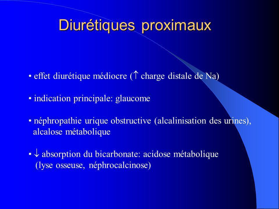Les Diurétiques de l'anse (DIA) Na + K+K+ ATP lumièresang K+K+ Na + 2Cl - Cl - - + Na +, Ca 2+, Mg 2+ DIA effet rapide et puissant (20 à 30% de la charge filtrée) l'hypertonicité médullaire est « lavée » par les DIA empêchent la génération du potentiel électro- et la réab- sortion par le shunt para-cellulaire (50% du Na) hypertonicité