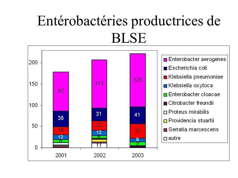 Entérobactéries productrices de BLSE