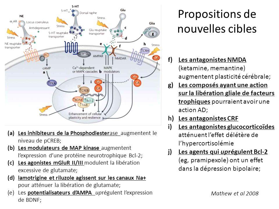 (a)Les inhibiteurs de la Phosphodiesterase augmentent le niveau de pCREB; (b)Les modulateurs de MAP kinase augmentent l'expression d'une protéine neur