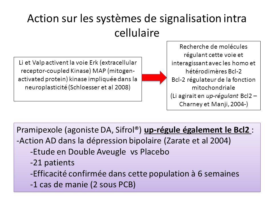Action sur les systèmes de signalisation intra cellulaire Li et Valp activent la voie Erk (extracellular receptor-coupled Kinase) MAP (mitogen- activa