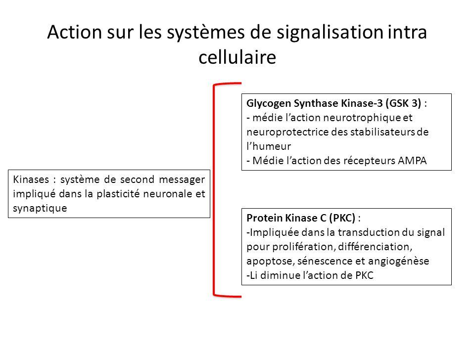 Action sur les systèmes de signalisation intra cellulaire Kinases : système de second messager impliqué dans la plasticité neuronale et synaptique Gly