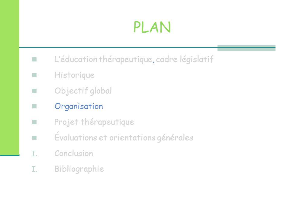 PLAN L'éducation thérapeutique, cadre législatif Historique Objectif global Organisation Projet thérapeutique Évaluations et orientations générales I.