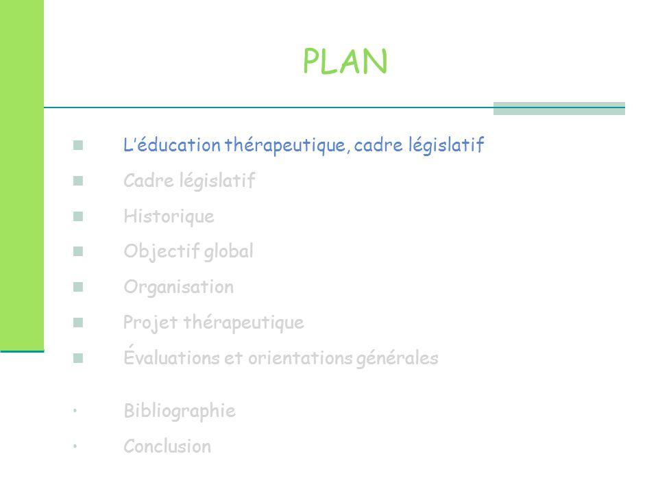 PLAN L'éducation thérapeutique Cadre législatif Historique Objectif global Organisation Projet thérapeutique Évaluations et orientations générales Conclusion Bibliographie