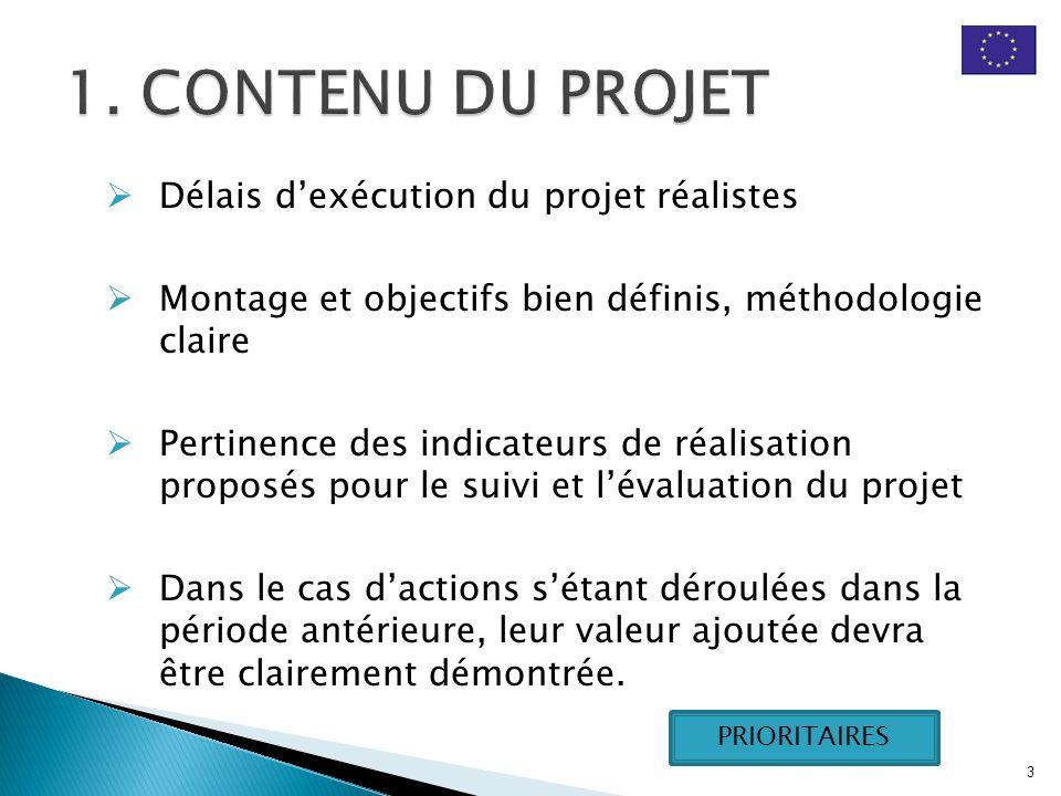  Délais d'exécution du projet réalistes  Montage et objectifs bien définis, méthodologie claire  Pertinence des indicateurs de réalisation proposés pour le suivi et l'évaluation du projet  Dans le cas d'actions s'étant déroulées dans la période antérieure, leur valeur ajoutée devra être clairement démontrée.