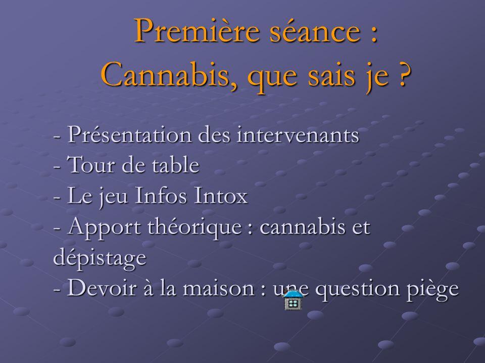 Première séance : Cannabis, que sais je ? - Présentation des intervenants - Tour de table - Le jeu Infos Intox - Apport théorique : cannabis et dépist