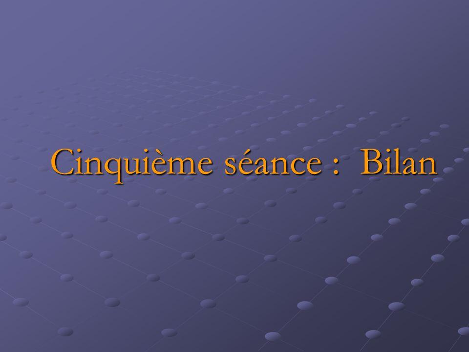 Cinquième séance : Bilan