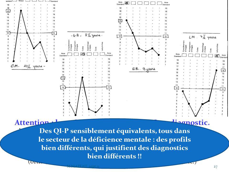 Attention : les « QI » ne constituent PAS un diagnostic. La passation des tests est NECESSAIRE mais non suffisante. Elle permet de repérer, pour chacu