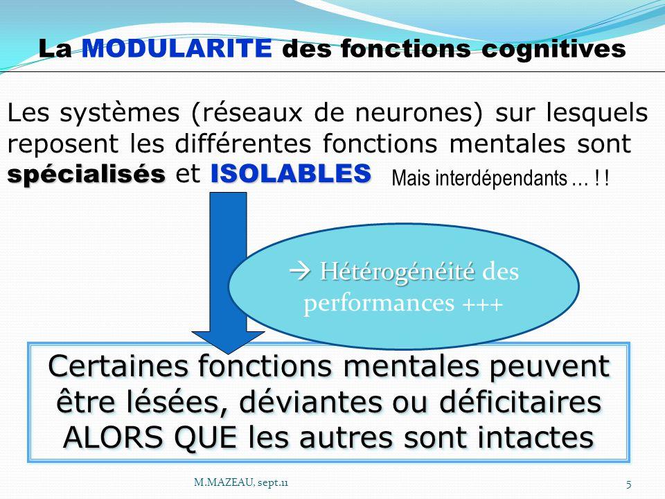 La MODULARITE des fonctions cognitives spécialisésISOLABLES Les systèmes (réseaux de neurones) sur lesquels reposent les différentes fonctions mentales sont spécialisés et ISOLABLES Mais interdépendants … .