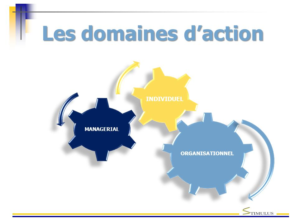 Les domaines d'action ORGANISATIONNEL MANAGERIAL INDIVIDUEL