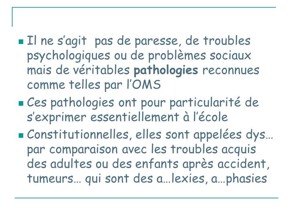 Le cerveau singulier du dyslexique 1) Troubles de maturation des aires du langage (ectopies)
