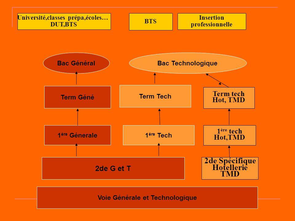 Voie Générale et Technologique 2de G et T 1 ère Génerale1 ère Tech Term Géné Term Tech Bac GénéralBac Technologique BTS Insertion professionnelle Univ