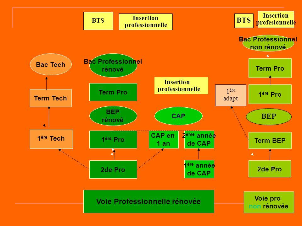 Voie Professionnelle rénovée Voie pro non rénovée Term Tech 2de Pro 1 ère Pro CAP en 1 an 1 ère année de CAP 2 ème année de CAP Term Pro 2de Pro Term