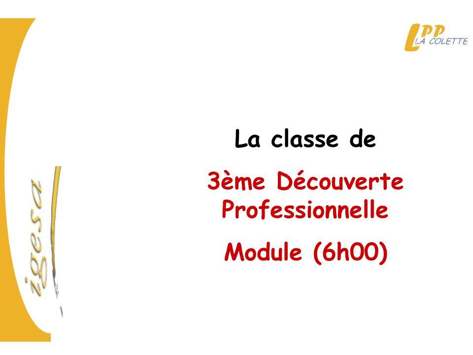 La classe de 3ème Découverte Professionnelle Module (6h00)