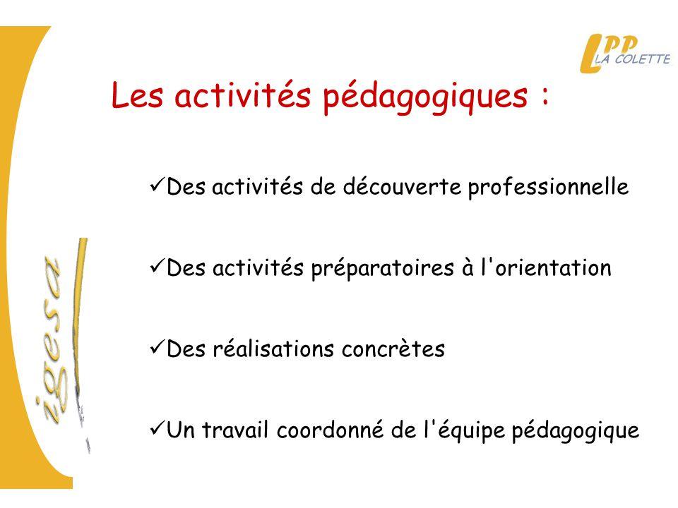 Les activités pédagogiques : Des activités de découverte professionnelle Des activités préparatoires à l orientation Des réalisations concrètes Un travail coordonné de l équipe pédagogique