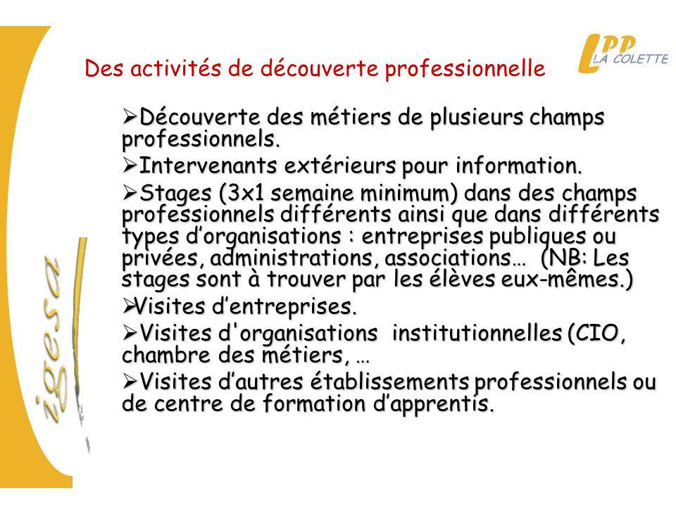  Découverte des métiers de plusieurs champs professionnels.  Intervenants extérieurs pour information.  Stages (3x1 semaine minimum) dans des champ