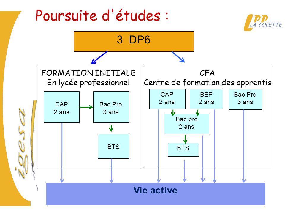 CFA Centre de formation des apprentis FORMATION INITIALE En lycée professionnel 3 DP6 CAP 2 ans Vie active BTS CAP 2 ans BEP 2 ans Bac pro 2 ans BTS B