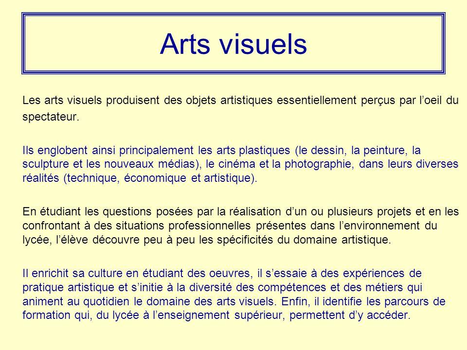 Arts visuels Les arts visuels produisent des objets artistiques essentiellement perçus par l'oeil du spectateur. Ils englobent ainsi principalement le