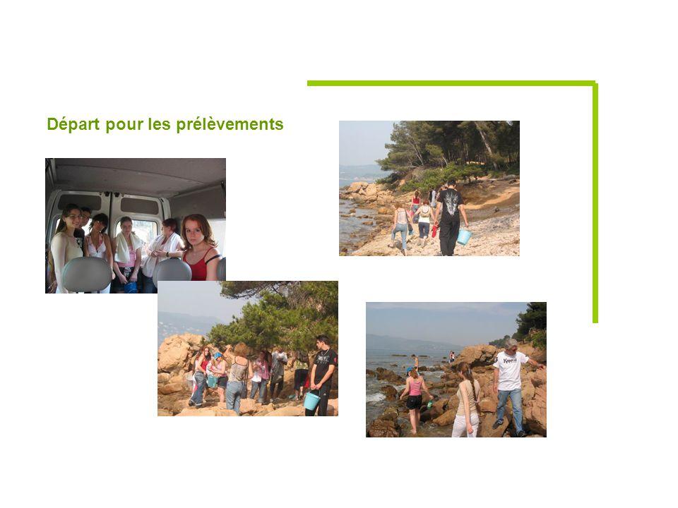 Nos belles photos : Tous nos remerciements à l'équipe de l'IGeSA qui nous a soutenu dans notre projet.