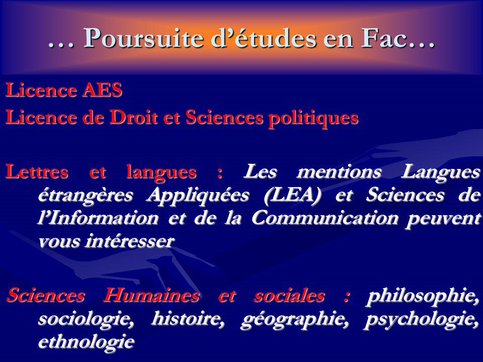 … Poursuite d'études en Fac… Licence AES Licence de Droit et Sciences politiques Lettres et langues : Les mentions Langues étrangères Appliquées (LEA)