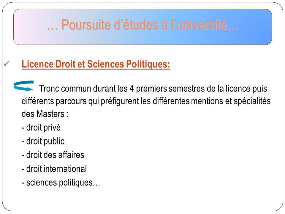 Licence Droit et Sciences Politiques: Tronc commun durant les 4 premiers semestres de la licence puis différents parcours qui préfigurent les différen