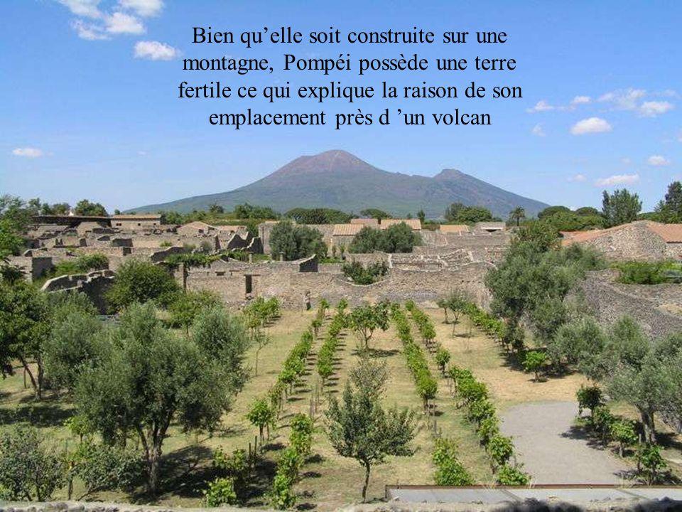 Bien qu'elle soit construite sur une montagne, Pompéi possède une terre fertile ce qui explique la raison de son emplacement près d 'un volcan